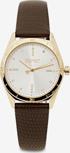 ESPRIT Armbanduhr in braun / gold / weiß, Produktansicht