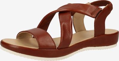 ARA Sandalen met riem in de kleur Cognac, Productweergave