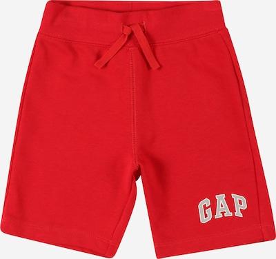 GAP Shorts in rot / weiß, Produktansicht