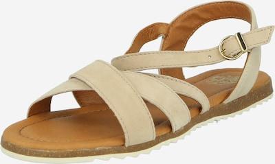 Sandale cu baretă Apple of Eden pe crem, Vizualizare produs