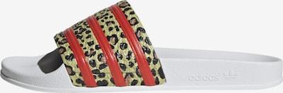 ADIDAS ORIGINALS Pantolette 'Adilette' in kitt / rot / schwarz / weiß, Produktansicht