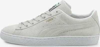 Sneaker low PUMA pe gri deschis, Vizualizare produs
