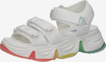STEVE MADDEN Sandalen in Weiß