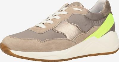 SANSIBAR Sneaker in gold / taupe / neongrün, Produktansicht