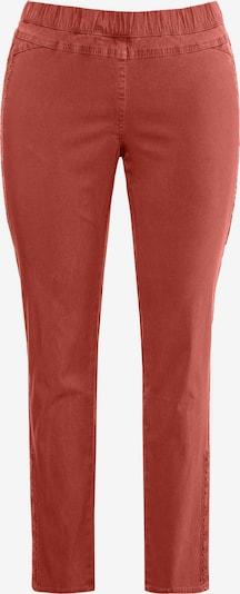 Ulla Popken Damen große Größen  bis 64, Bengalinhose, blickdicht unterlegte Spitze, Schmale Form, Elastikbund,  720718 in orangerot: Frontalansicht