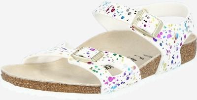 BIRKENSTOCK Sandalias 'Rio' en mezcla de colores / blanco, Vista del producto