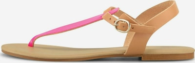 COX Zehentrenner 'Dianette' in pink, Produktansicht