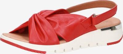 CAPRICE Sandale in hellrot / weiß, Produktansicht