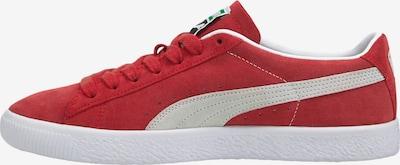 PUMA Sneaker in blutrot / weiß, Produktansicht