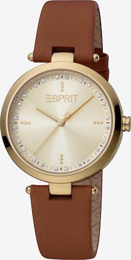 ESPRIT Quarzuhr in braun / gold, Produktansicht