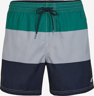 O'NEILL Shorts 'Horizon' in Mischfarben