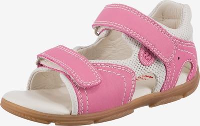 ELEFANTEN Sandale in pink / weiß, Produktansicht