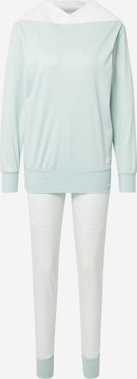 CALIDA Pyjama in de kleur Mintgroen / Wit, Productweergave