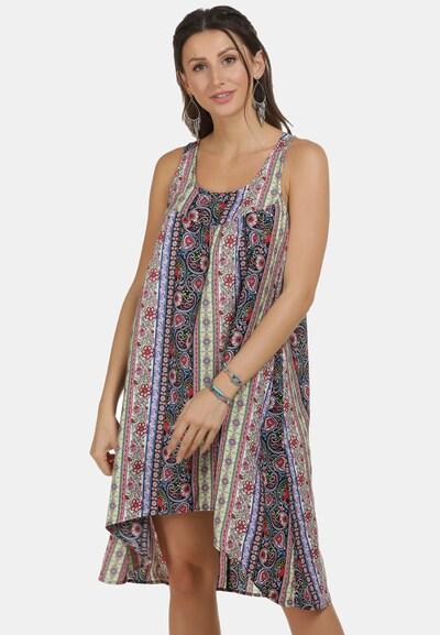 usha FESTIVAL Kleid in himmelblau / schilf / rot / schwarz / weiß, Modelansicht