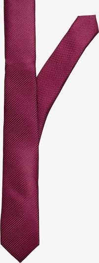 Accesori costum Jack & Jones Junior pe albastru / burgund, Vizualizare produs