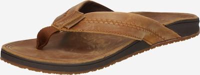 BILLABONG Sandalias de dedo 'BRUNSWICK' en marrón, Vista del producto