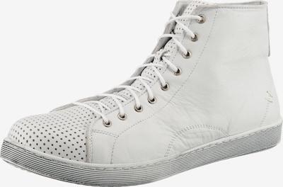 ANDREA CONTI Schnürstiefelette in weiß, Produktansicht