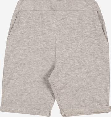 Guppy Shorts 'JACOB' in Grau