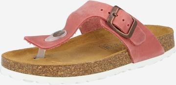 Sandales 'OLINA' LURCHI en rose