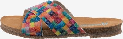 Greenova Pantolette in braun / mischfarben, Produktansicht