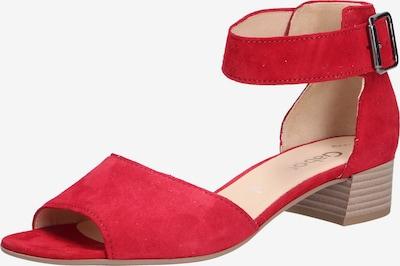 GABOR Sandales à lanières en rouge foncé, Vue avec produit