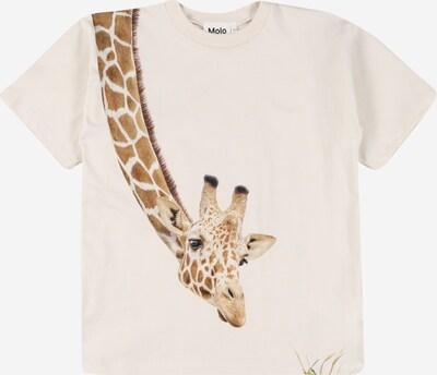 Molo T-Shirt en noisette / vert / noir / blanc, Vue avec produit