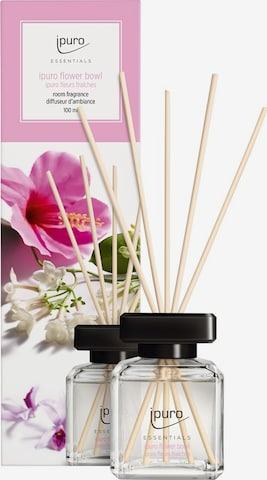 ipuro Raumduft 'Flower Bowl' in Transparent