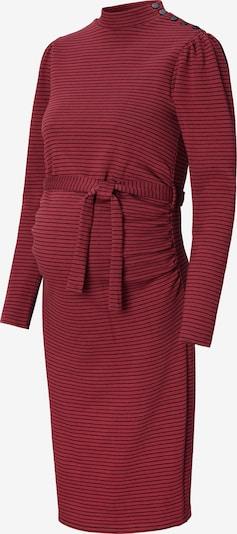 Noppies Sukienka ' Huron ' w kolorze mieszane kolory / czerwonym, Podgląd produktu