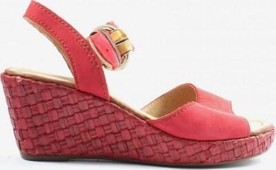 GABOR Plateau-Sandalen in 37 in rot, Produktansicht