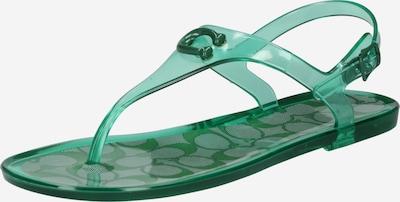 COACH Tongs 'Natalee' en vert, Vue avec produit