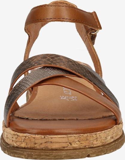 MARCO TOZZI Sandalen met riem in Bruin / Brons / Taupe aPHZApVe