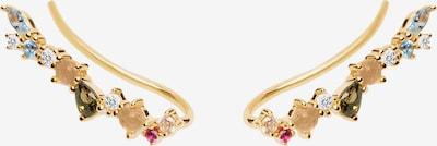 P D PAOLA Ohrringe 'Euphoria' in gold, Produktansicht