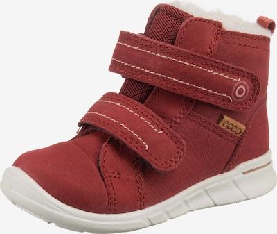 ECCO Schuh 'First' in weinrot, Produktansicht