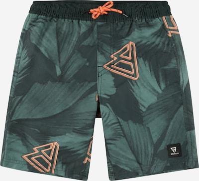 Brunotti Kids Kupaće hlače 'Mason' u žad / tamno zelena / koraljna, Pregled proizvoda
