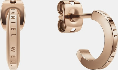 Daniel Wellington Ohrstecker in gold, Produktansicht