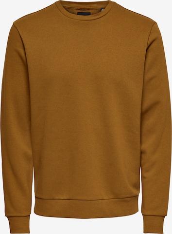 Only & Sons Sweatshirt 'Ceres' in Braun