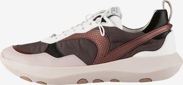 Högl Sneakers 'VSN 01' in Brown