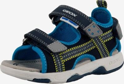 GEOX Sandale in hellblau / dunkelblau / gelb / grau, Produktansicht