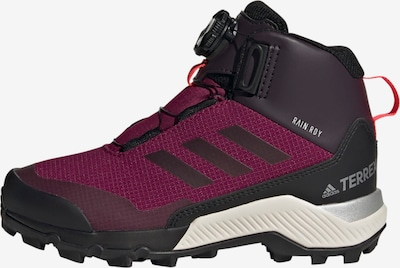 ADIDAS PERFORMANCE TERREX Winter Mid Boa Schuh in lila, Produktansicht
