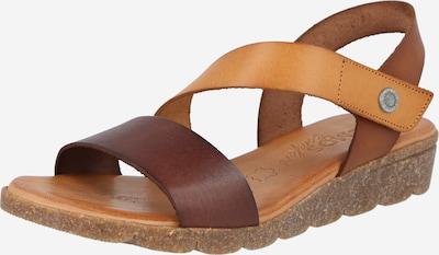 COSMOS COMFORT Páskové sandály - hnědá / světle hnědá, Produkt