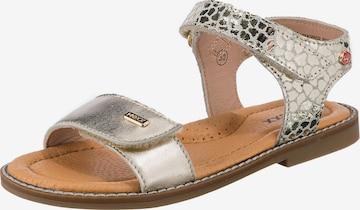 MEXX Sandals in Gold