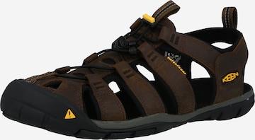 KEEN Sandaal 'CLEARWATER CNX', värv pruun