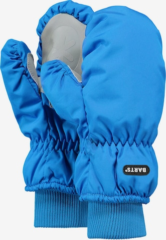 Barts Gloves in Blue