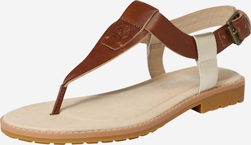 TIMBERLAND T-Bar Sandals in Brown