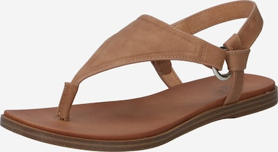 CALL IT SPRING T-bar sandals in Brown, Item view