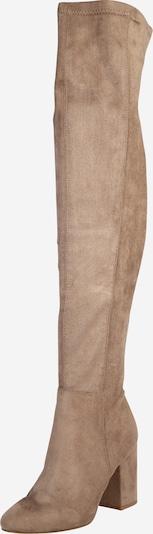 Madden Girl Čizme iznad koljena 'ROBYN' u taupe siva, Pregled proizvoda