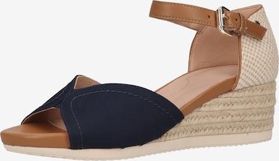 GEOX Sandale in beige / blau / braun, Produktansicht
