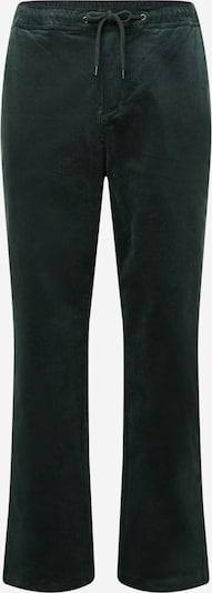Iriedaily Hose 'Trapas' in dunkelgrün, Produktansicht