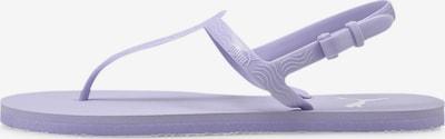 PUMA T-Bar Sandals 'Cosy' in Purple, Item view