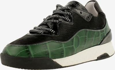Rehab Sneaker ' ALEXA CRO ' in grün / schwarz, Produktansicht